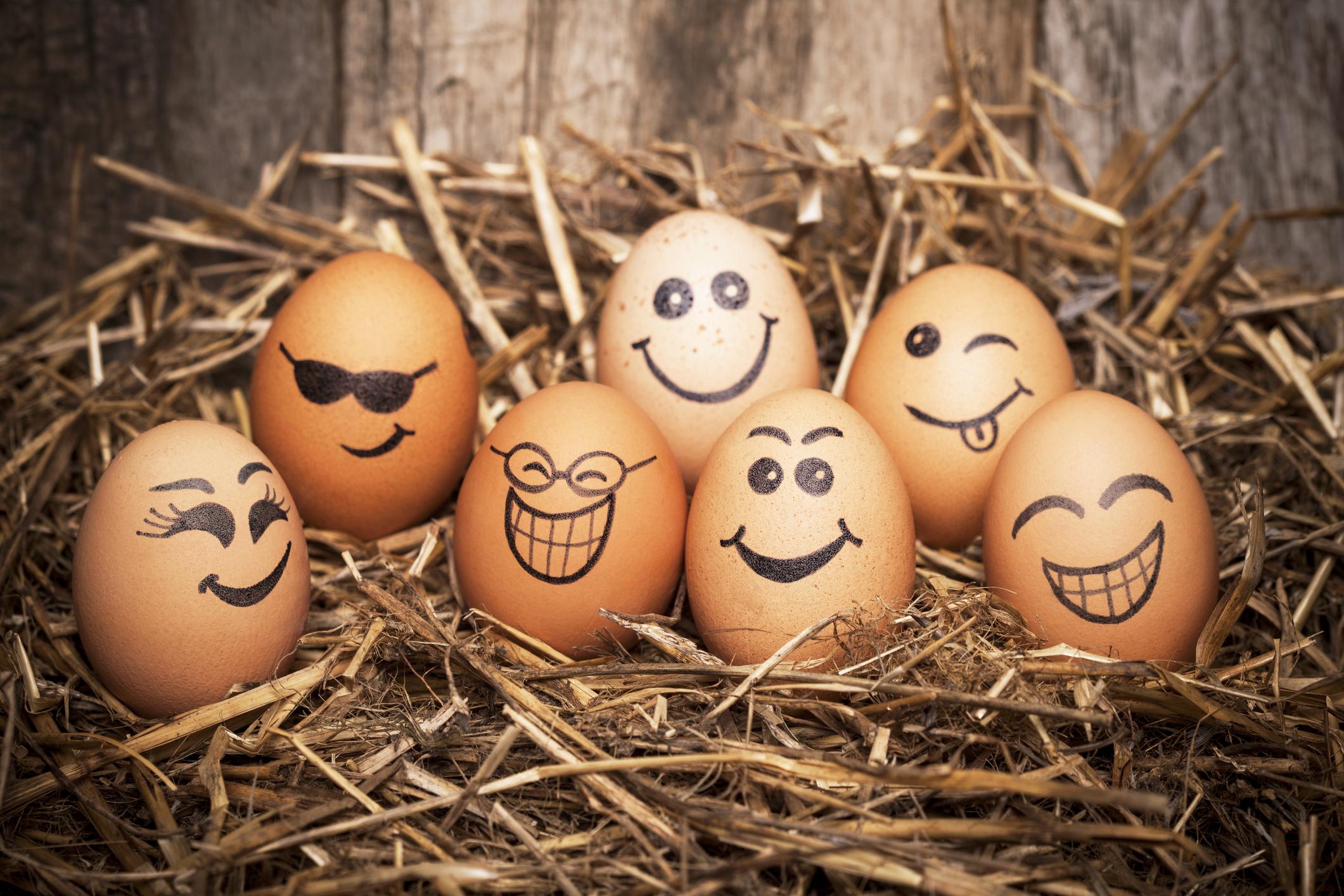 Jajka przyrządzane kreatywnie